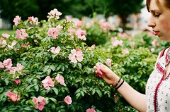 Flowers in Bristol 2 (aarsten93) Tags: colour kodak explore britain bristol rolleiflex rollei analogue film filmphoto love