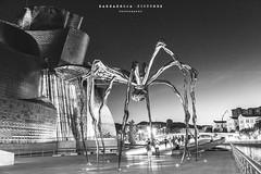+ART or INVASION?+ (Barbarroja Pictures) Tags: spider iron walk sculpture art museum guggenheim black white blackandwhite mono monochrome night bilbao people alien modernism city lights shadows