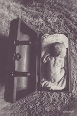 IMG_5999_WEB (adinanoel) Tags: beb baby maternity maternidad premam prenatal babybump happy felicidad natural life love internacional international multicultural photojournalism photojournalistic fotoperiodistico fotoperiodismo photography photographer canon 5dmkii