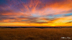 Home Cookin' - Sacramento County, California (Tactile Photo | Greg Mitchell Photography) Tags: loneoak october landscape sunset michiganbarroad brown fall clouds bluesky california oaktree lonetree beautiful sacramentocounty tree solo sacramento color autumn friday oak field