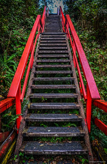 Stairs from the wharf up to Imperial Lane - Ucluelet (spetersonphotography) Tags: ucluelet ukee westcoastvancouverisland westcoast britishcolumbia canada nikond5200 nikon island 2016 uclueletinlet ocean pacificocean docks wharfs boats fishingboats fishing fishboats tourists water inlet marina smallcraftharbour uclueletboatbasin sailboats tidepools moorage wharf