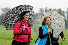 Hallwilerseelauf: Mit Schirm und Charme