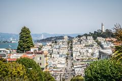 San Francisco (Channed) Tags: america amerika california lombardstreet noordamerika sanfrancisco us usa unitedstates unitedstatesofamerica vs verenigdestaten chantalnederstigt city