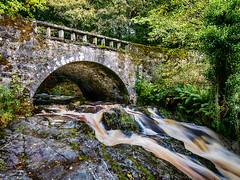 Cloughlea Bridge II October 2016 (kckelleher11) Tags: 2016 cloughlea hdr ireland olympus bridge effect em5 flow flowing kilbride manor october omd river stream water wicklow