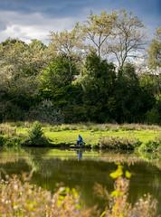 941A3533 (Orrellpenguin) Tags: orrell water park billinge winstanley