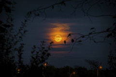 Fiery Moon. Windsor, ON. (Pat86) Tags: photooftheday windsor nikond7000 moon clouds moonrise