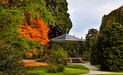 Le kiosque  musique (Diegojack) Tags: automne couleurs paysages vaud arbres parc indpendance morges lumire