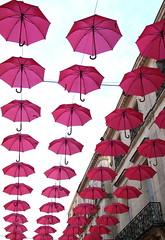 Montpellier, France (Kristel Van Loock) Tags: umbrellas parapluies ombrellesroses paraplus ruedelaloge 10102016 10octobre2016 montpellier france francia frankrijk visitfrance visitmontpellier seemymontpellier montpelliercity city ciudad citt stadt stad ville citytrip octobrerose umbrella pinkumbrellas rozeparaplus parapluiesroses montpelliernow ombrella europe europa zuidfrankrijk southoffrance