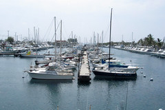 Honokohou harbor (BarryFackler) Tags: ocean sea water marina boats island hawaii polynesia harbor pier dock pacific pacificocean wharf tropical slip bigisland sailboats fishingboats masts watercraft kona kailuakona konacoast pleasureboats hawaiicounty hawaiiisland 2013 westhawaii northkona barryfackler barronfackler honokohouharbor honokohoumarinaandsmallboatharbor honokohoumarina