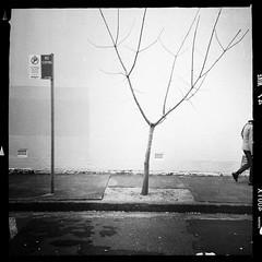 escape (Albion Harrison-Naish) Tags: redfern sydney newsouthwales australia streetphotography sydneystreetphotography albionharrisonnaish mobilephotography iphoneography iphone iphone5s hipstamatic janelens aodlxfilm unedited straightoutofcamera sooc