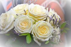 Rosas para una novia.Roses for a bride. (fcoalcalde) Tags: rosa flowers flores boda novia roses bride