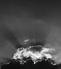le joyau (doubichlou) Tags: ciel sky nuage cloud val marne ile france banlieue suburb noir blanc black white monochrome