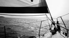 Sailing in Black and White (Rafael SR) Tags: sailing sailboat blackandwhite canon pretoebranco florianpolis monocrome