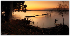 Sweet Moments... (juliewilliams11) Tags: photoborder outdoor serene sunset waterfront shoreline shore newsouthwales australia trees nature longexposure canon 70d