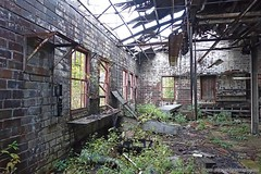 Overgrown workshop. Full article here: http://www.placesthatwere.com/2016/08/beautiful-abandonment-nature-reclaims.html #abandoned #abandonedplaces #decay #abandonedbuilding #derelict #Iowa #industrialdecay #urbex #urbanexploration #lehigh #brick #reclaim (placesthatwere) Tags: abandoned urbanexploration ghosttowns urbex rurex abandonedplaces forgottenplaces urbandecay decay beautifuldecay