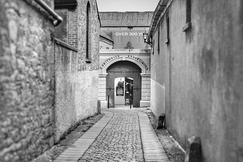 This pathway has lead to great beer since 1710 #history #monochrome #street #blackandwhite #smithwicks #fujifilm #fujixt1 #kilkenny #ireland🍀