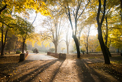 (Djordje Petrovic) Tags: vrnjackabanja autumn fall jesen tokina tokina1224mm serbia srbija nikond80 light shadow morning contrejour color photo tokinalens