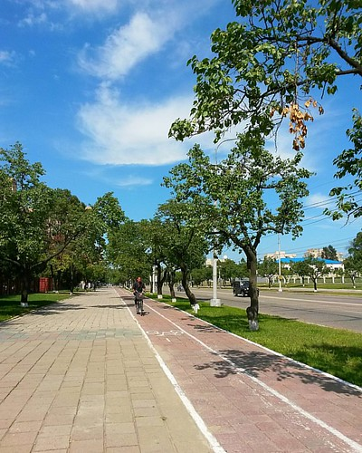 Bike lane in Sanwon street, #Pyongyang, #NorthKorea - #latergram (September 12, 2015) - 📷 Samsung Galaxy S4 mini - #dprk #korea #koreautara #photography #fotografi #travel #traveling #traveler #story #travelfotografi #travelphotography #instagram #