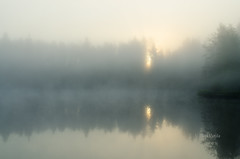 One misty morning (grus_p) Tags: sunrise dawn morning mist may lake light sunlight reflections softness calmness luminanceborale finland water