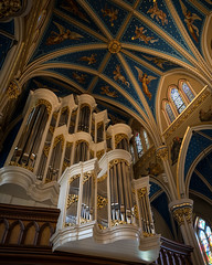 Got Pipes? (Fret Spider) Tags: notredame basilica pipes stadium reflection touchdownjesus football campus university alter zeiss loxia2821 sonya7rii mirrorless manuallens southbend indiana duke afternoon september church pipe organ music hymn