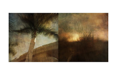 'all fused and welded into one coloured mass by the violent heat of that Spanish summer' (mark kinrade) Tags: spain asiwalkedoutonemidsummermorning laurielee kinrade diptych