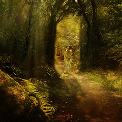 Through  the light. (BirgittaSjostedt_Sorry, internet problem.) Tags: path forest scene nature leaves tree sun sunray outdoor landscape sweden paint mysterious light shadow fairy tale modern creation autumn birgittasjostedt trolled artdigital netart