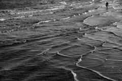 Venice - Lido (luca marella) Tags: beach sea venice lucamarellacom blackwhite