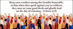 1 Peter 2:12 (joshtinpowers) Tags: peter bible scripture