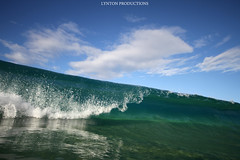 IMG_3316 copy (Aaron Lynton) Tags: makena big beach wave waves barrel bigbeach lyntonproductions canon 7d 580exii hawaii