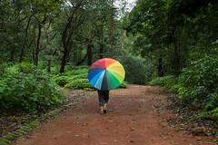 Matheran-5166 (Satish Chelluri) Tags: satishchelluri satishchelluriphotography matheran maharastra umbrella mansoon