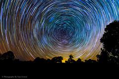 StarTrailWally's1-3 (Photography By Tara Gowen) Tags: startrails stars night blue trees australia lighttrails nikon southernsky tokina1116mm wideanglelens longexposure circles nightsky taragowen photographybytaragowen nswmidnorthcoast nsw