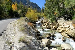 Side by Side (Patricia Henschen) Tags: nathrop colorado canyon chalkcreekcanyon mtprinceton mtantero mountains mountain sawatch rangewaterfallcascade fallschaffee countyautumnfallleaf peepingaspenfall colorspaths caminhos backroads backroad country