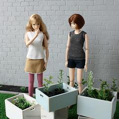 3/15 (MINIMAGINE) Tags: minimagine minimaginecom momokodoll momoko garden playscale playscaledolls