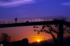 Walking in the sky (Otacílio Rodrigues) Tags: passareladepedestres pedestrianwalkway contraluz againstthelight grade guardrail árvores trees pedestre pedestrian travessia crossing ponte bridge sol sun pôrdosol sunset céu sky nuvens clouds urban city cidade resende brasil oro silhuetas silhouettes topf25 topf50