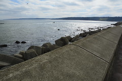 Scarborough (153) (rs1979) Tags: scarborough northyorkshire yorkshire eastcoast southbay southbeach