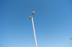 Light pole and pigeons (Boyd Shearer) Tags: fountains fayettecounty lexington downtown kentucky unitedstates us