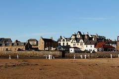 Elie Cricket on the Beach (ir0ny) Tags: elie scotland fife coast beach cricket beachcricket