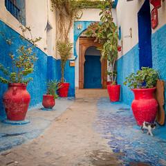 La porte est ouverte... (alexandrecoilier) Tags: maroc urbain sries style lieux flick lescouleursdumaroc