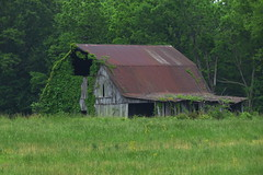IMG_7118-1 Pike County Indiana (John Pohl2011) Tags: sx50hs canonsx50hs canon john pohl farm outbuilding country