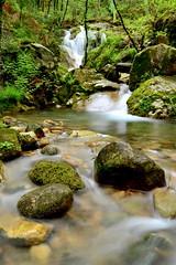 Fervenza escondida - Hidden waterfall (Gato M) Tags: morrazo fraga bosque forest waterfall seda cascada fervenza moaa rio river fleuve verde