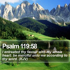 Daily Bible Verse - Psalm 119:58 (daily-bible-verse) Tags: scriptures preaching infinity praisejesus endofdays