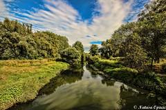 Carpe Diem (_Natasa_) Tags: green nature river landscape water croatia hrvatska slavonia slavonija reflections natasaopacic natasaopacicphotography canon canoneos600d sigma sigma1020mm widelens
