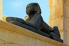 Sphinx de Ramss II/Thoutmsis III, Palais de Diocltien, Split  (philippedaniele) Tags: 3palais de diocltien pristyle sphinx split vividstriking