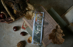 autumnal reading (Button-NK) Tags: books chestnuts stilllife embroidery leaves autumn bookmark