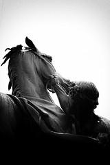 725A3651 (denn22) Tags: horse tamers denn22 oktober 2016 russia stpetersburg russland eos7d 50mm bw