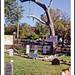 Dodge City, Kansas Hangman's Tree - 1972