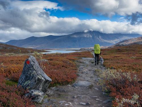 Lappland-092015-31