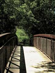 Le chemin le plus court... (Jean S..) Tags: bridge shadow trees summer path sunny green forest
