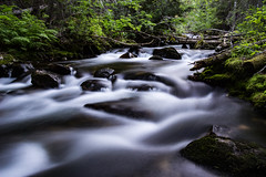 Low Light High Water (ebhenders) Tags: montana bitterroot valley bass creek water low light long exposure forest rocks