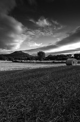 Roseberry Topping (Mike Fellows) Tags: pentax k5 1645 mono silver efex pro 2 middlesbrough roseberry topping countryside